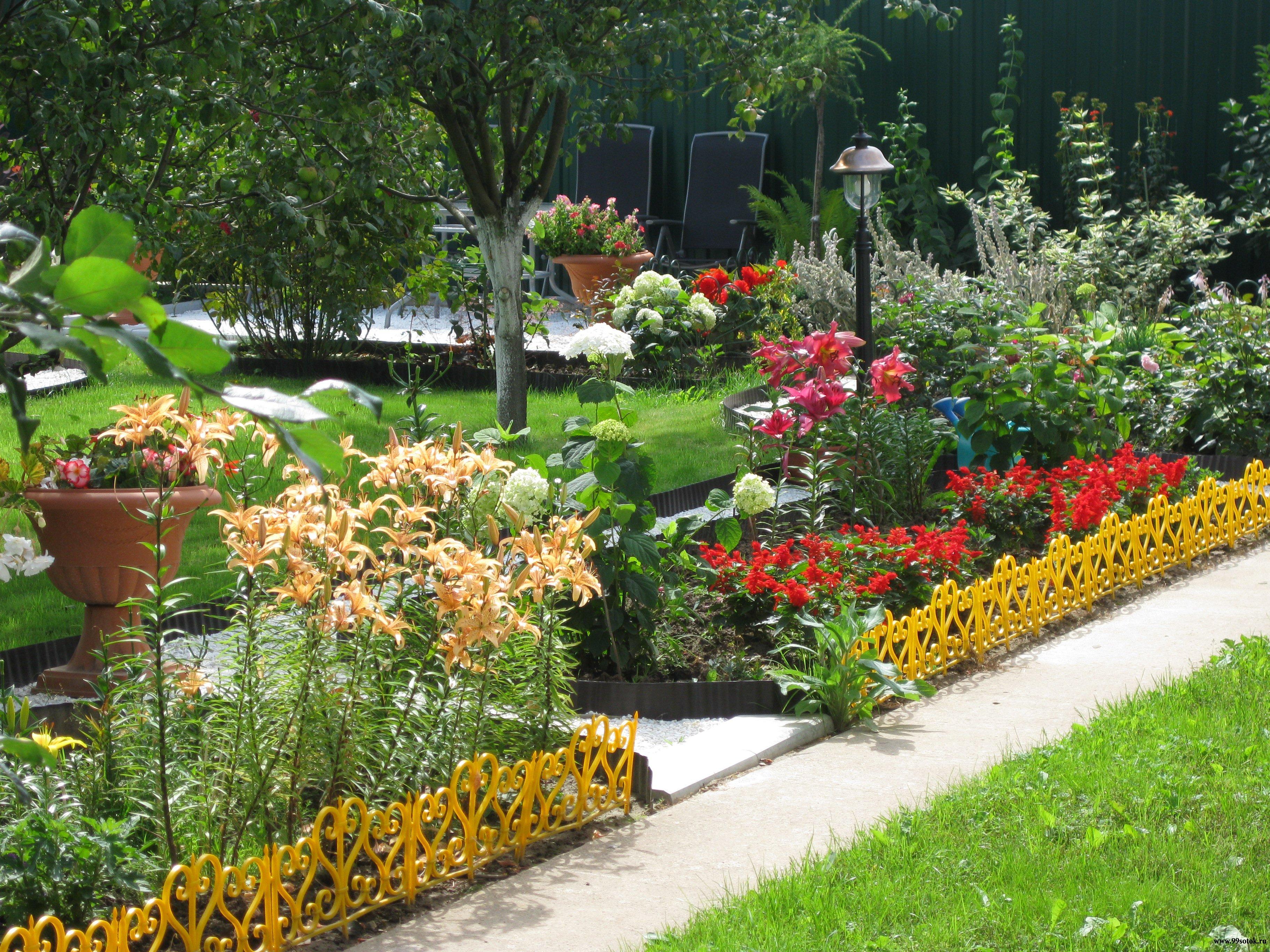 Фото дачных участков с цветами и