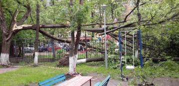 ул. 9-я Парковая, д. 41А, ГБОУ школа № 209