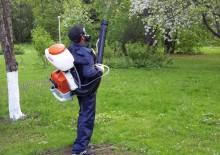 Борьба с вредителями деревьев - 5
