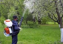 Борьба с вредителями деревьев - 7