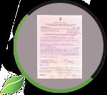 Документы на вырубку леса