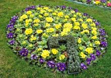 Посадка цветов - 6
